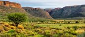 What you'll find in the Cederberg Wilderness Area