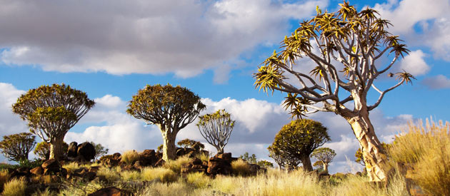 Keetmanshoop, in the Karas Region in South Africa