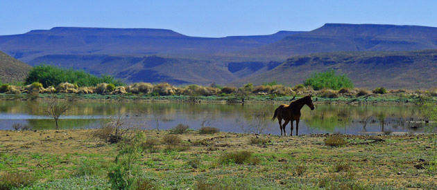 Clanwilliam, in the Western Cape, South Africa, West Coast Activities
